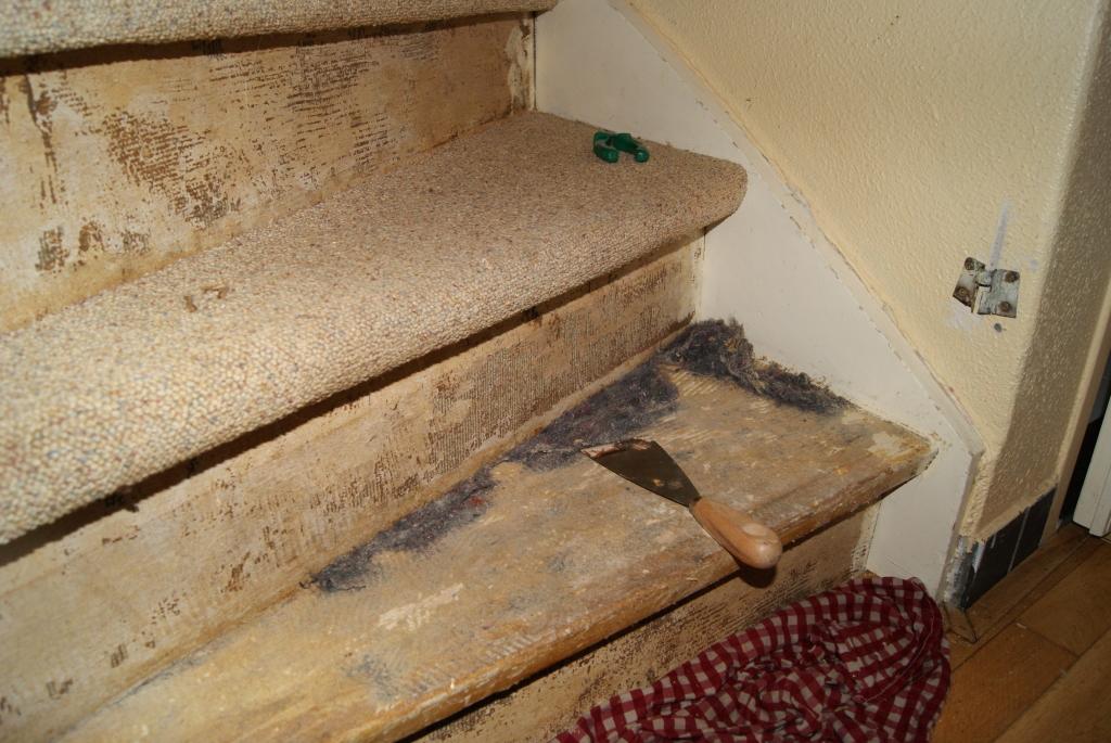 Trap Tapijt Verwijderen : Vloerbedekking verwijderen sloopkenners